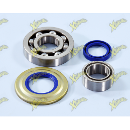 Polini crankshaft overhaul kit