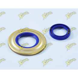 SERIES OIL SEALS MOTOR...
