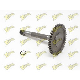 Reverse engine primary transmission shaft