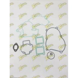 Air motor gaskets series