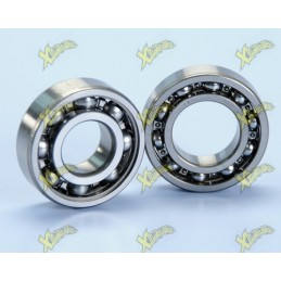 Polini crankshaft bearings...