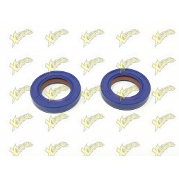 Minimoto oil seals 15x24x5 racing Polini