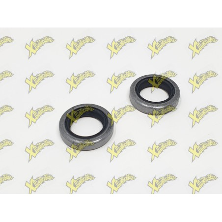 Polini minibike engine seals (15x22x5) 143.065.001
