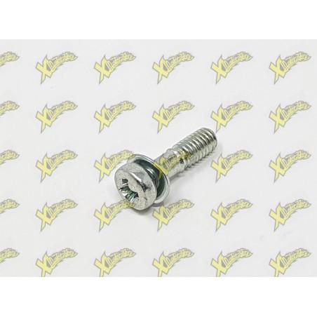 Fixing screw pan Dellorto