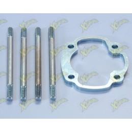 Yamaha cylinder base spacer...