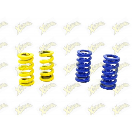 Minibike clutch sets Polini