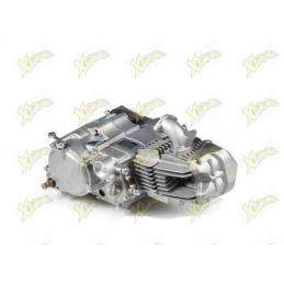 Ohvale 190cc daytona engine