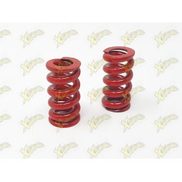 Red Clutch springs wire 2.5 mm