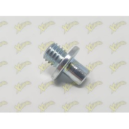 Threaded pin with brake...