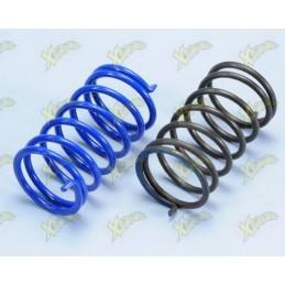 Polini contrast springs kit