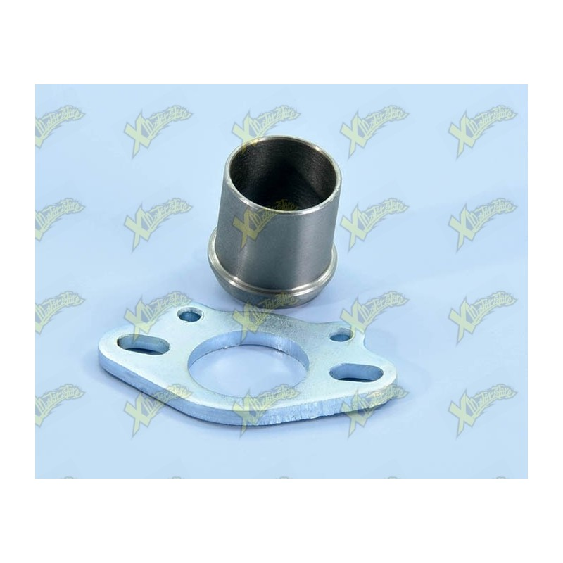 Exhaust manifold for exhaust 200.0172