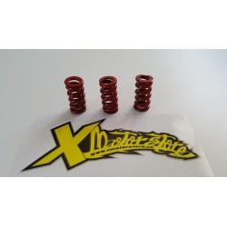 3 red springs IAME CS