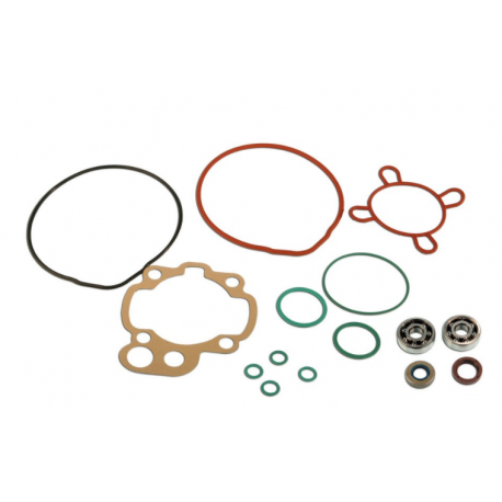 Skf Bearing Kit + Am6 cylinder seals