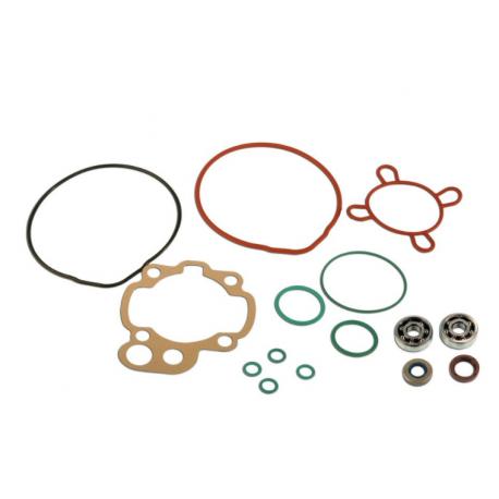 Skf bearing kit and Minarelli Am6 cylinder gaskets