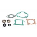 Kit cuscinetti Skf + guarnizioni cilindro Booster