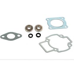Skf Bearing Kit + Piaggio air cylinder seals