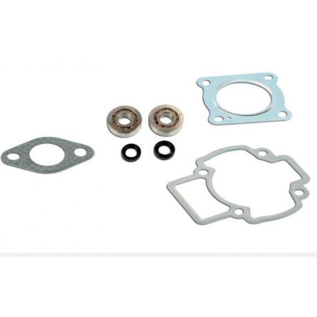 Skf Bearing Kit + Piaggio air cylinder seals