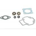 Kit cuscinetti Skf + guarnizioni cilindro Piaggio air