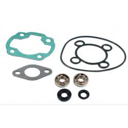 Skf Bearing Kit + Nitro Cylinder Seals