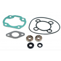 Skf Bearing Kit + Nitro Cylinder Seals