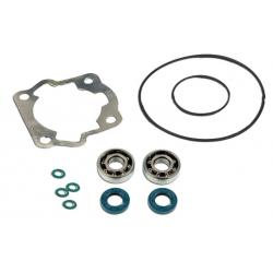 Skf Bearing Kit + Cylinder Seals Derby Senda E2