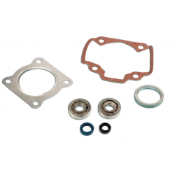 Skf Bearing Kit + Pgt air cylinder seals
