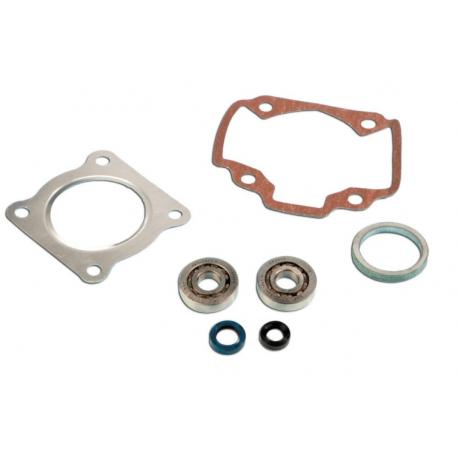Skf Bearing Kit + Pgt air cylinder seals