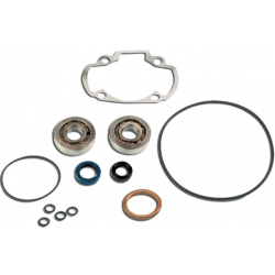 Skf Bearing Kit + Pgt H2O Cylinder Seals