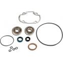 Skf Bearing Kit + Pgt H2O Cylinder Seals