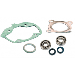 Skf Bearing Kit + Pgt Ludix air cylinder seals