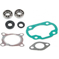 Skf Bearing Kit + cylinder gasket Mbk Ovetto