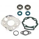 Skf Bearing Kit + Senda E3 Cylinder Seals