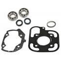 Skf Bearing Kit + Pgt Ludix H2O Cylinder Seals