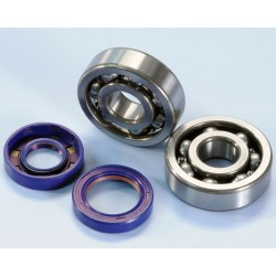 MINARELLI AM6 CRANKSHAFT REPLACEMENT KIT