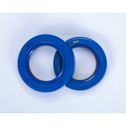 PTFE / FKM OIL SEALS MINARELLI AM6 CRANKSHAFT