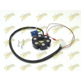 Polini ignition stator for...