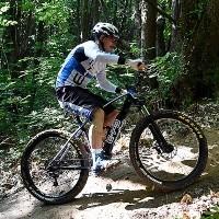 E-bike POLINI