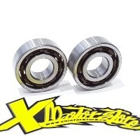 MINIMOTO ENGINE BEARINGS